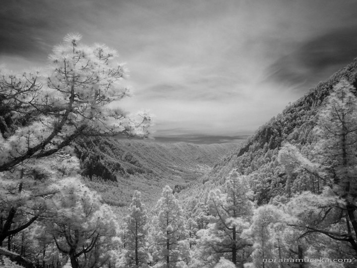 La Palma, Canary Islands in Infrared